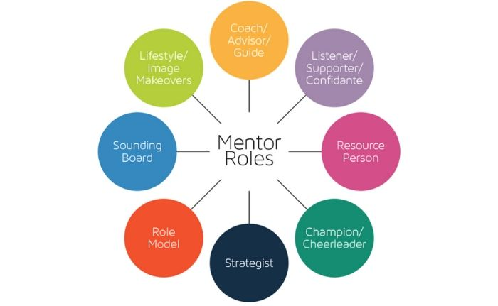 Mentor roles
